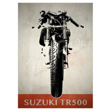 Suzuki TR500 Race Bike Front View